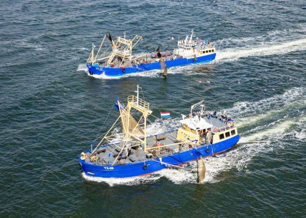 Garnalen vissen bij Texel met de TX10 & TX20