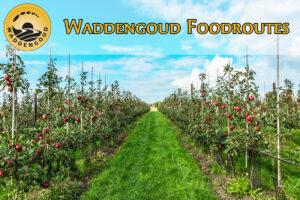 Waddengoud foodroutes